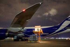 Man Standing In Open Cargo Door of 747 Airplane