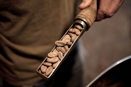 Askinosie Chocolate Cocoa beans