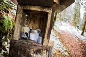 Absinthe Bottle In the Woods Môtiers, Switzerland