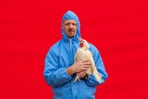 Man Holding Chicken Against Red Backdrop