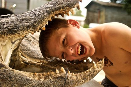 Boy with Head in Alligator Mouth