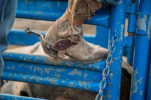 Tight Closeup of a Cowboy Boot On a Fence