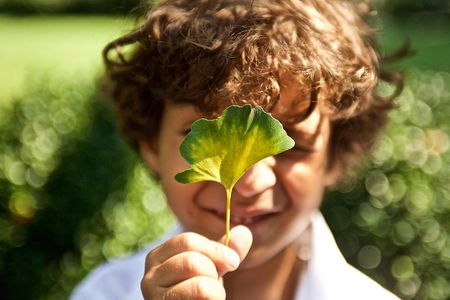 A young Boy Holding Aa Leaf