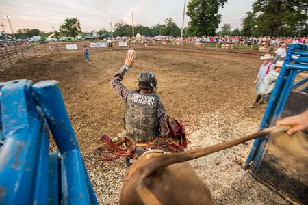 Bullrider Out Of the Gate