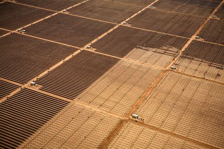 Aerial View of Solar Farm Installation