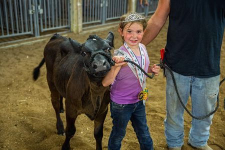 A young Girl Exhibiting Her Cow