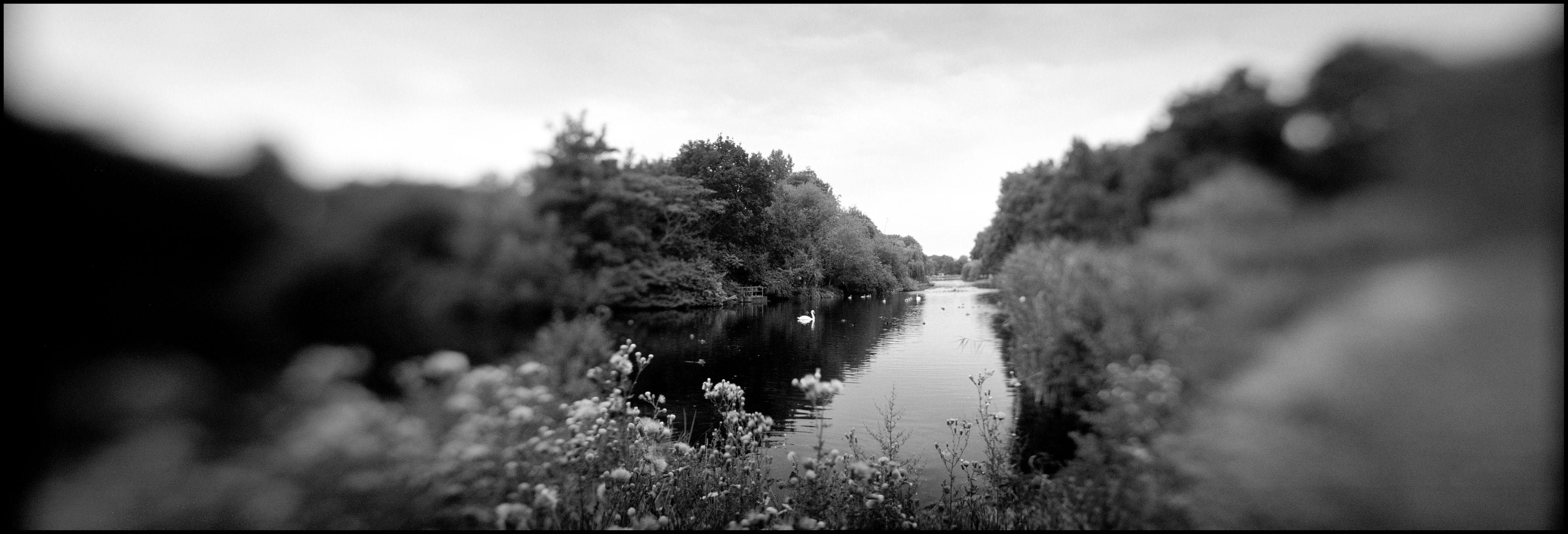 Duck Island, England.jpg