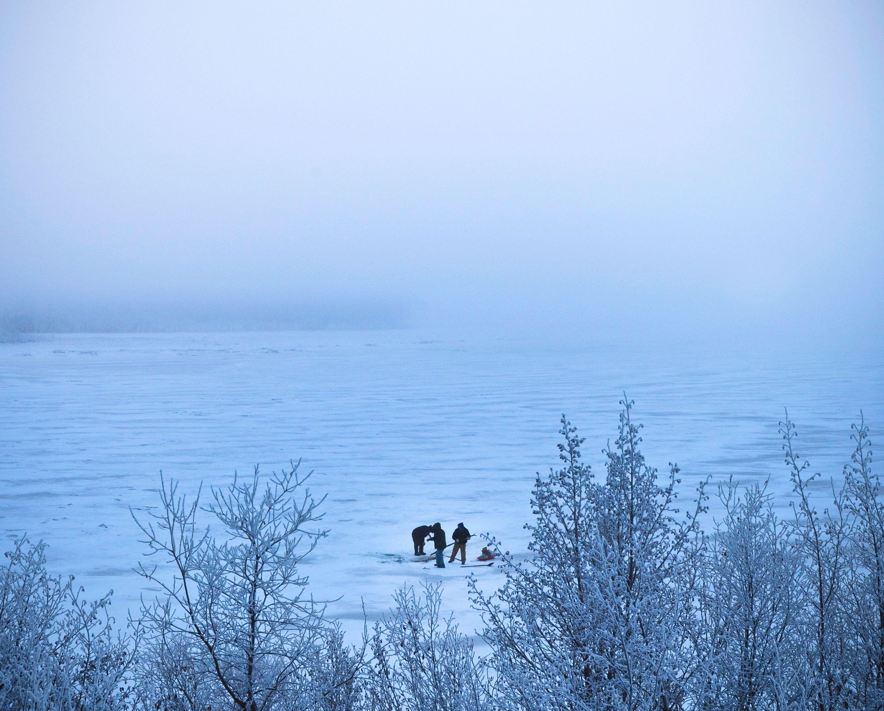 icefish.jpg