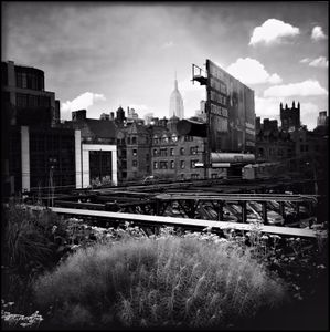 High Line - New York City - 06.22.2015