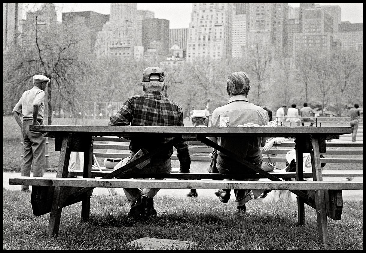Park Bench, Central Park - NYC
