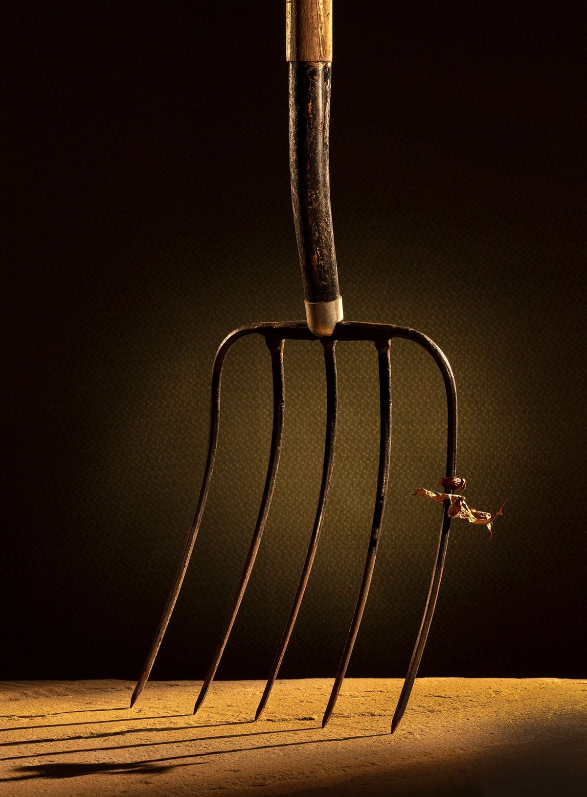 Pitchfork,patina,tools,old tools,design