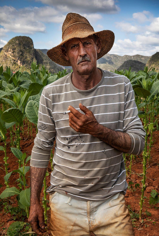 Fatigued Tobacco Picker Cuba.jpg