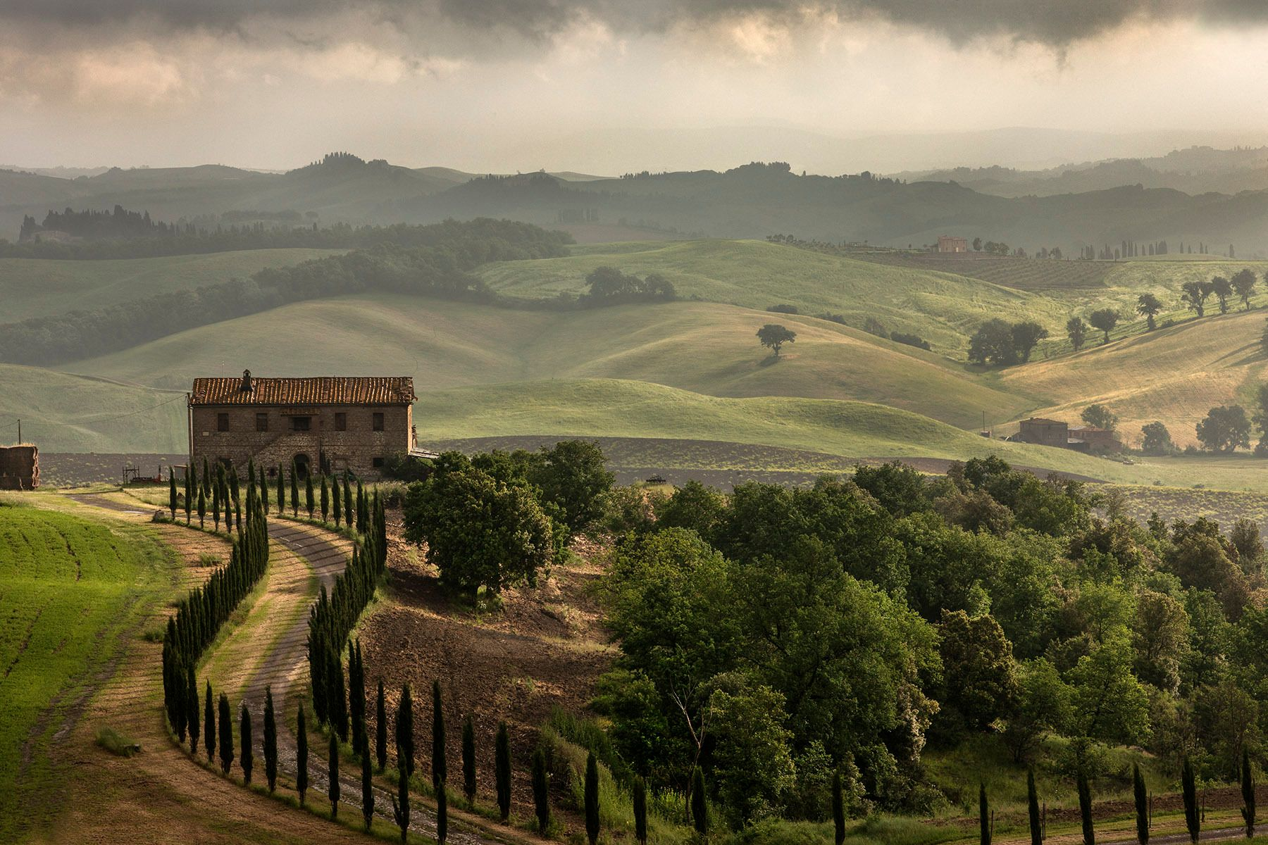 Tuscan Morning, near Murlo, Italy
