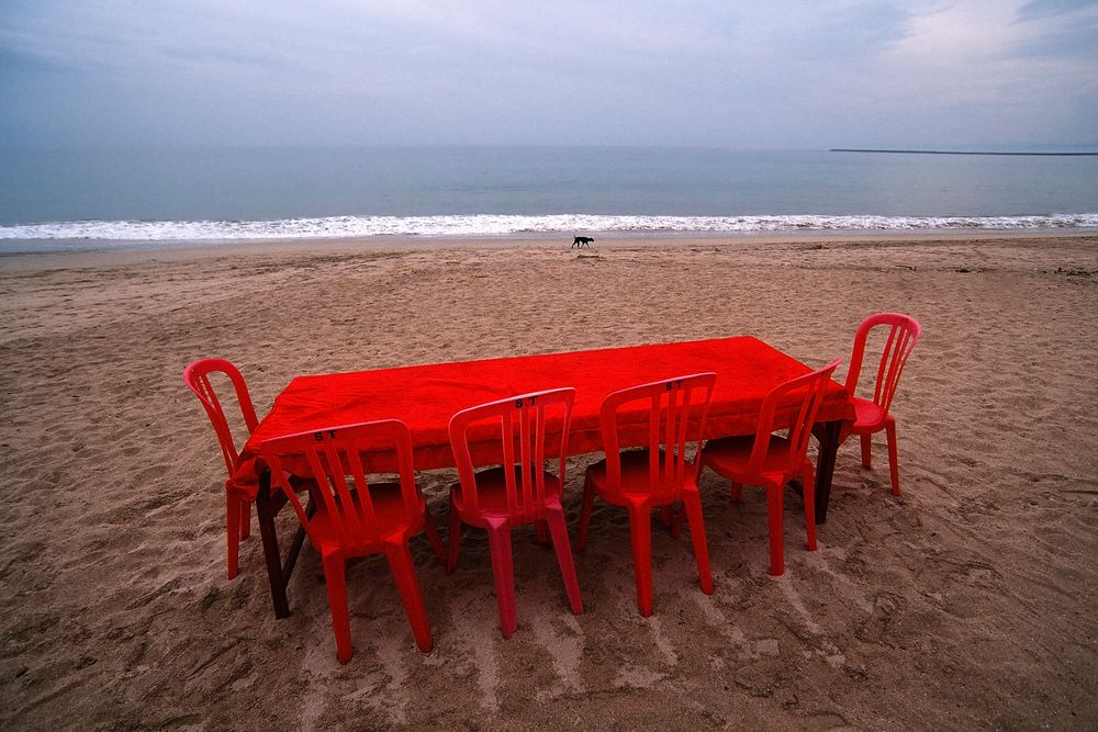 Red table, black dog.