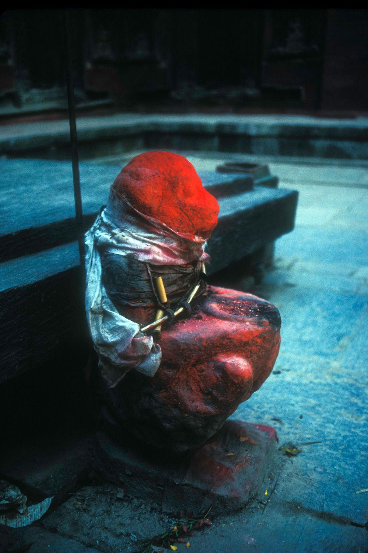 Red stone monkey.