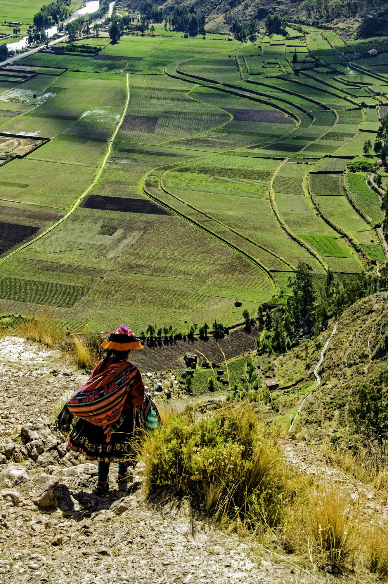 10-A Little Red-Olantaytombo, Peru.jpg