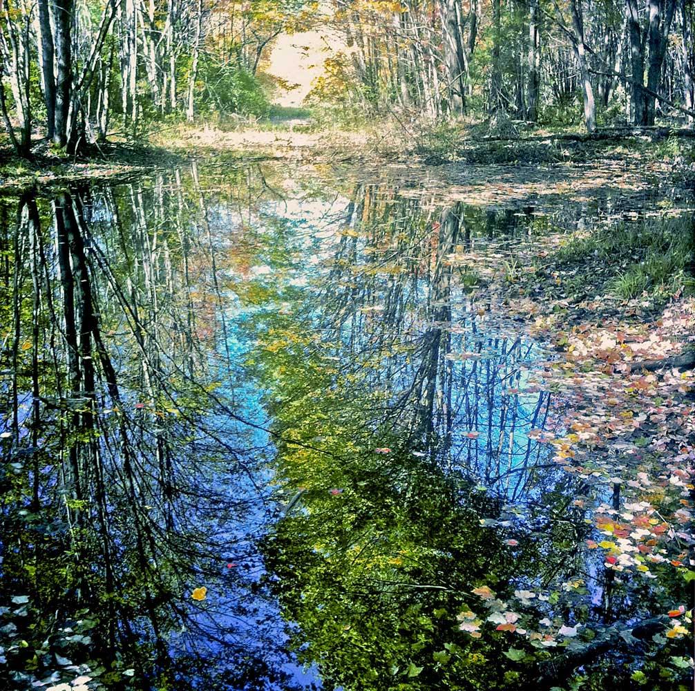 impressionist-bog-NH.jpg