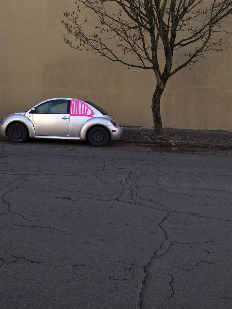 VW-window-tree. Portland, Oregon.