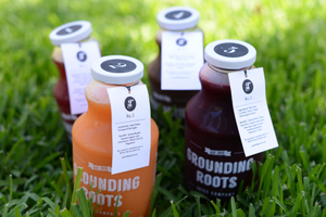 Grounding Roots - Company Launch