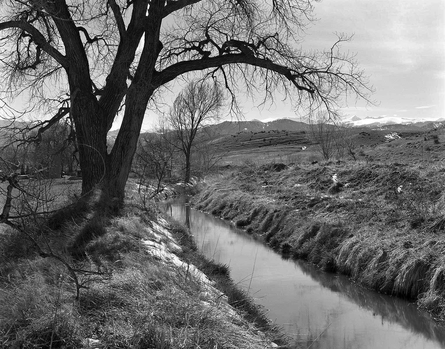 Boulder, Landscape, spring, black & white, film, Boulder Whiterock ditch,
