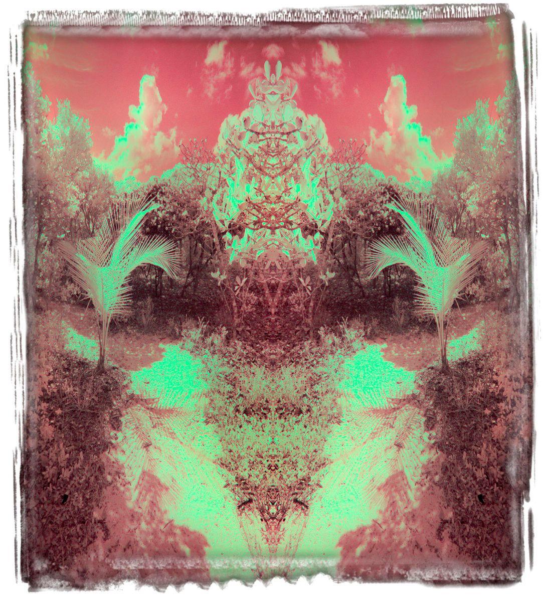 lynyard cay, bi '14 2736aa