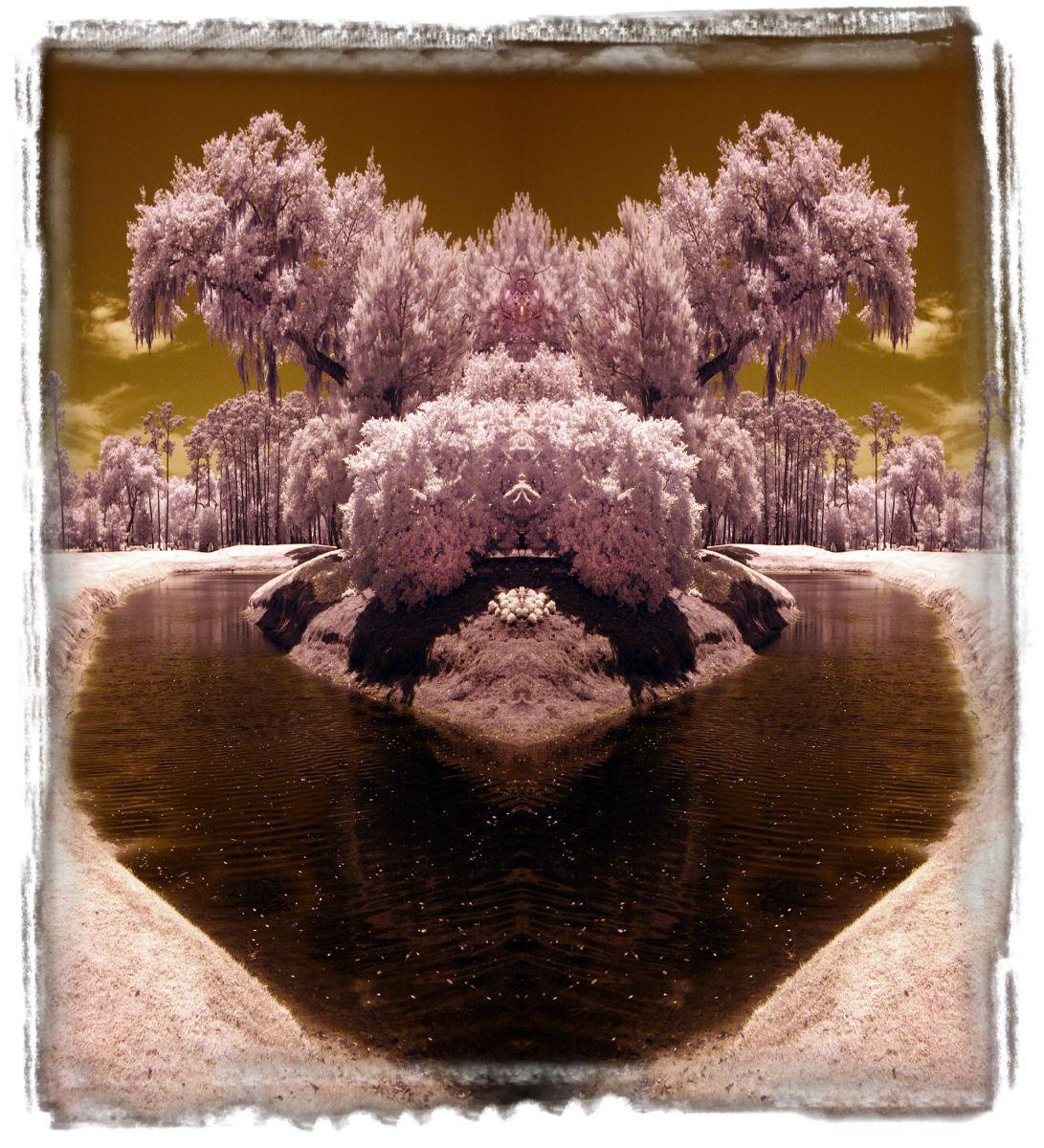sawgrass, fl'11 0846b