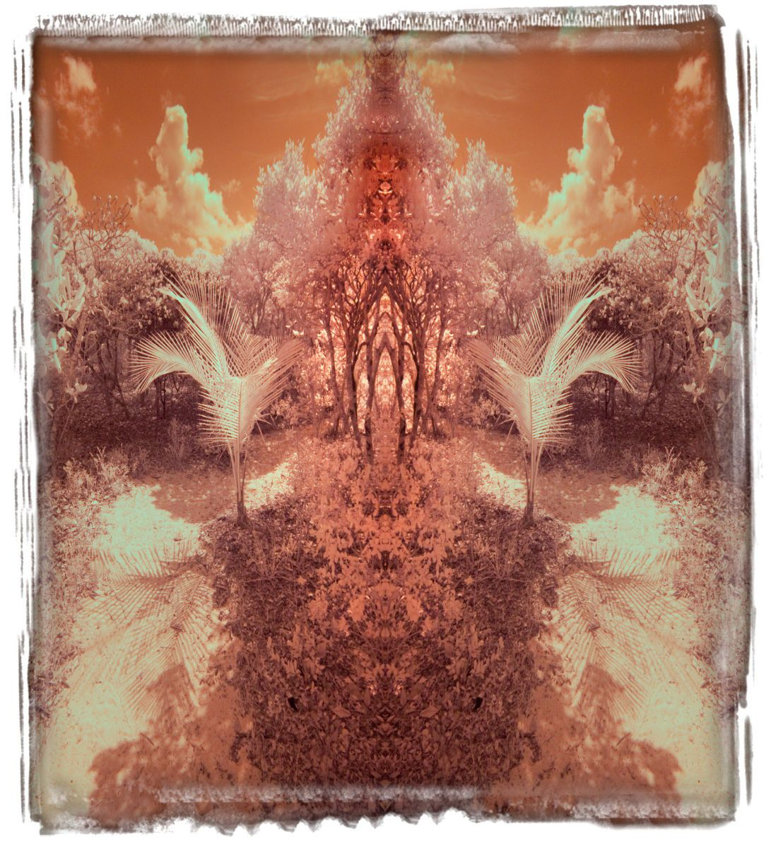 lynyard cay, bi '14 2736ab