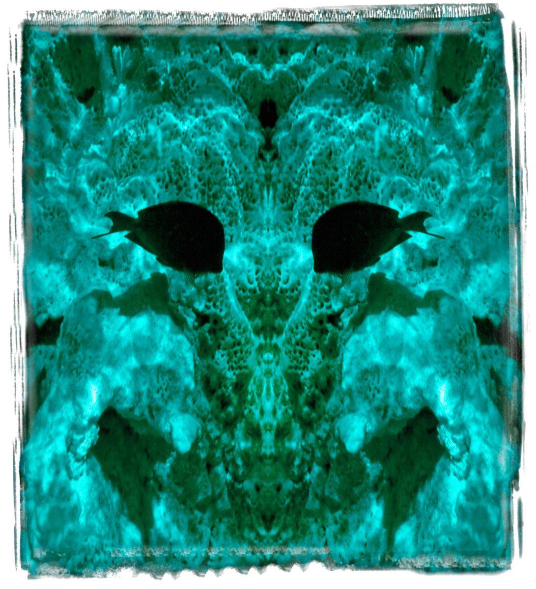 fowl cay reserve, bi '14 2151a