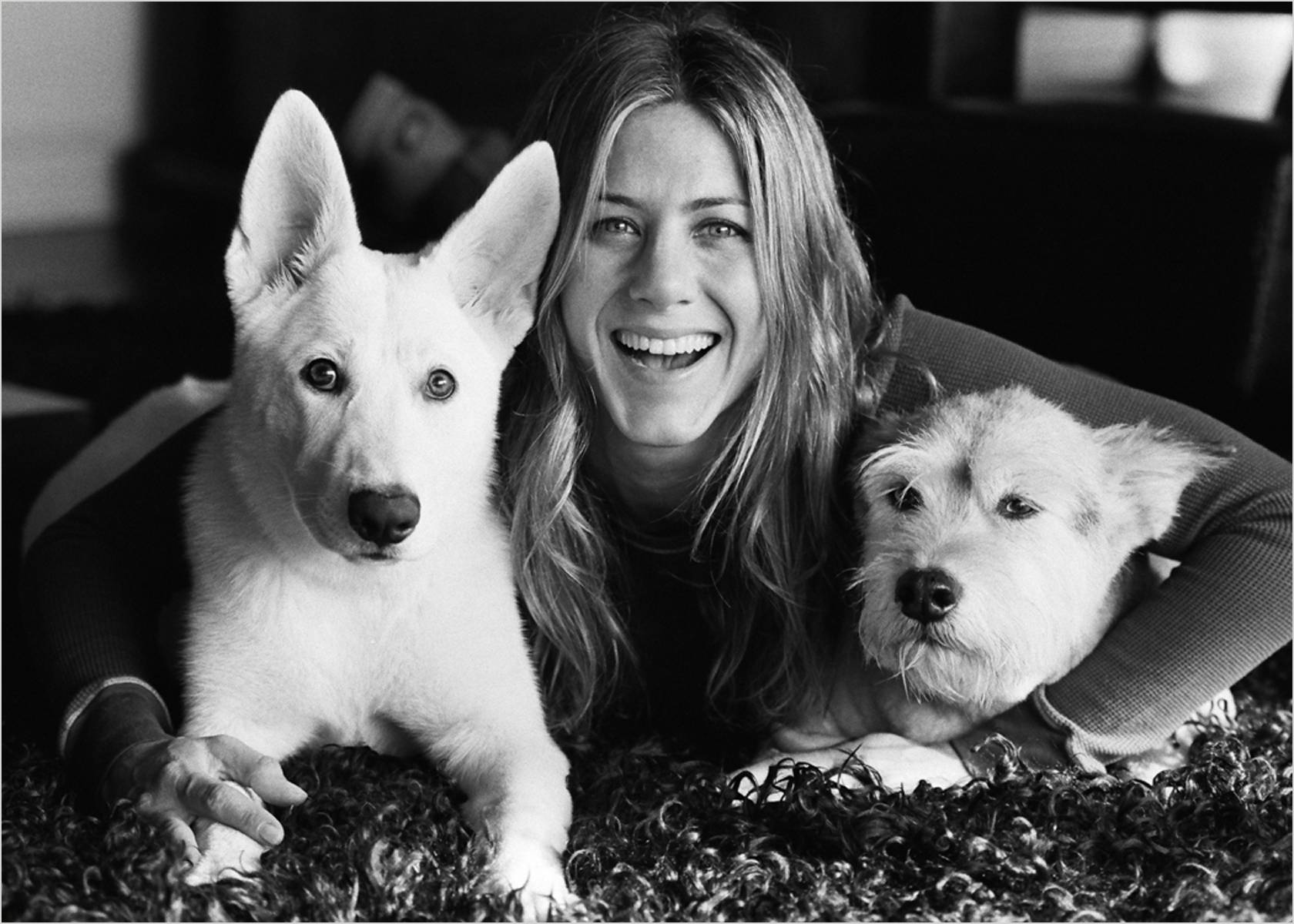 3_1jen_and_dogs.jpg