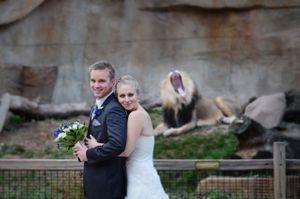 Wedding photo at Brookfield Zoo