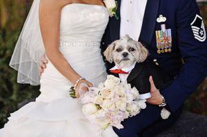Wedding details, fun ideas (11).jpg
