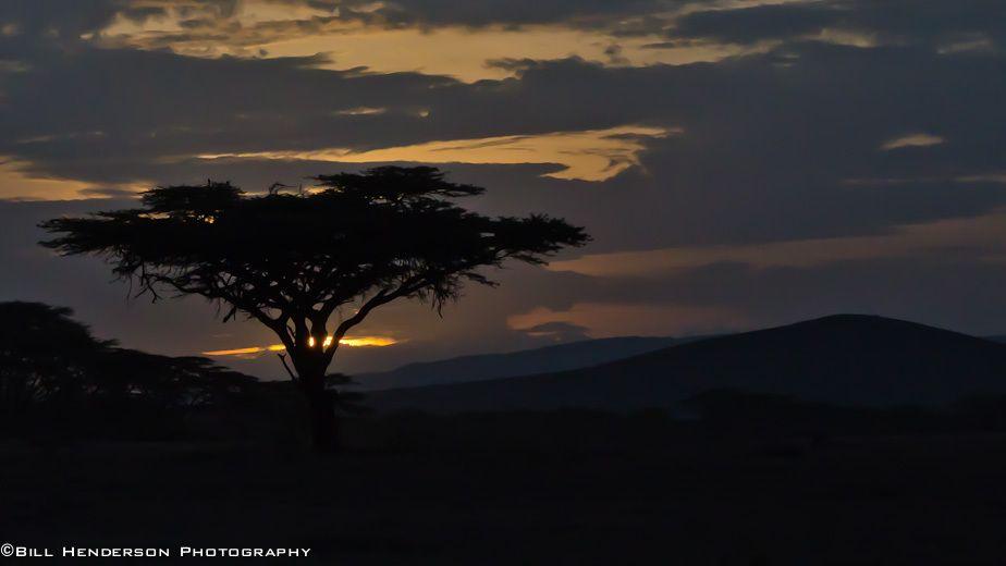 Lewa, Africa