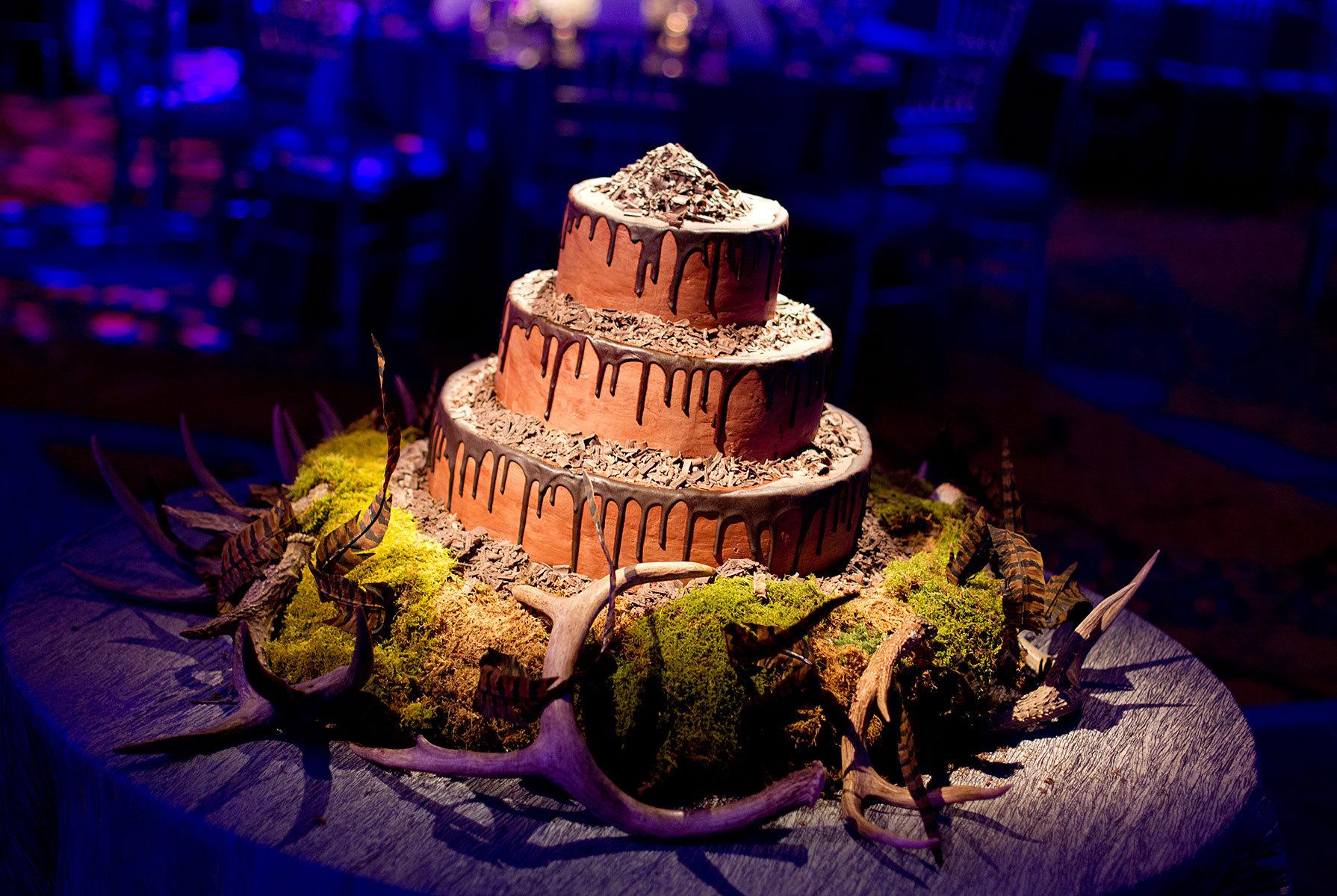 1antler_cake.jpg
