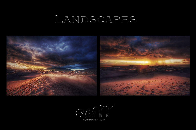 landscape intro.jpg