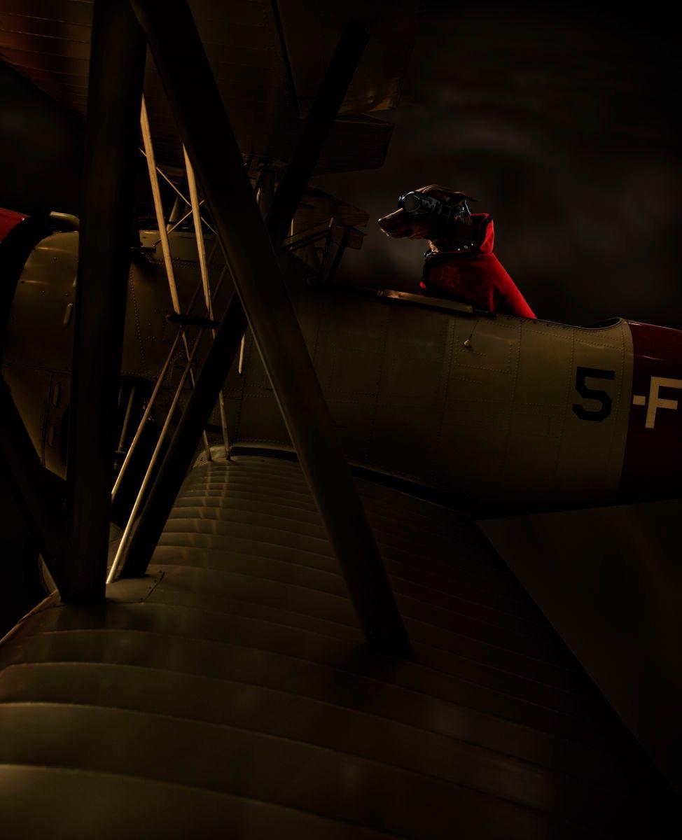 1redbaronplaneflatt