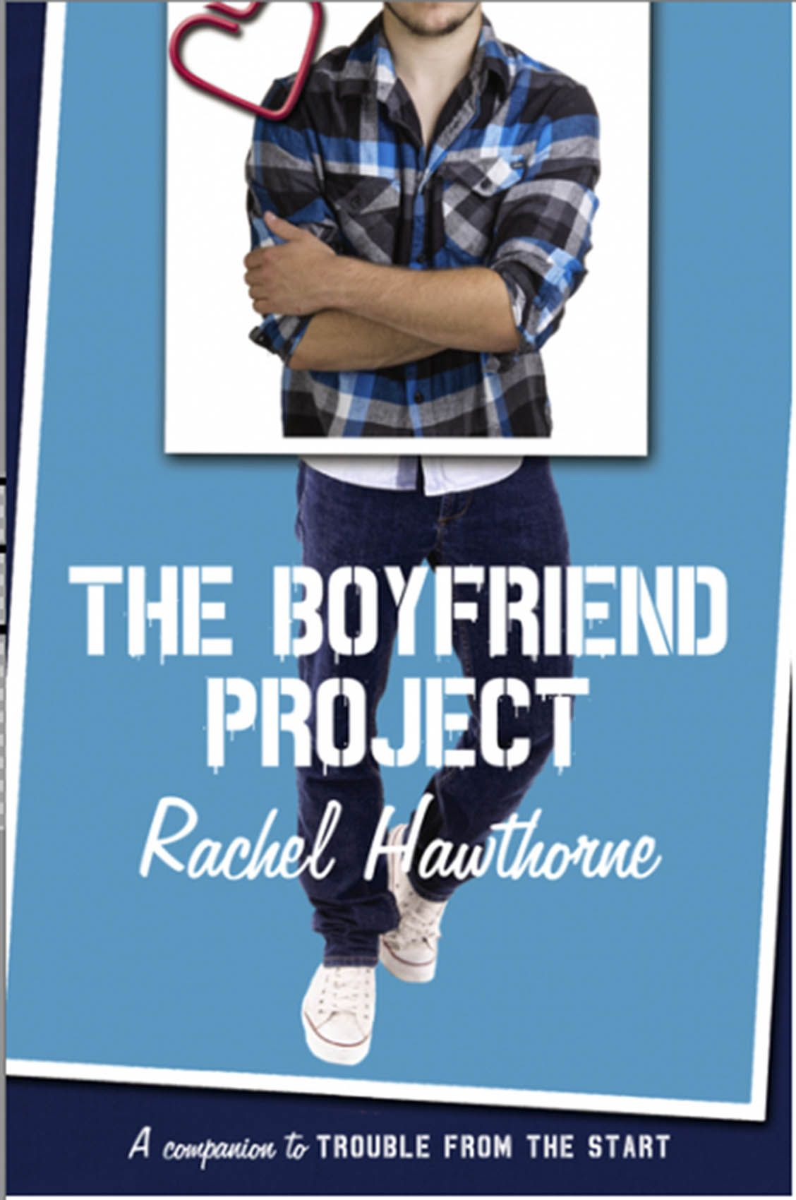 Boyfriend Project  book cover