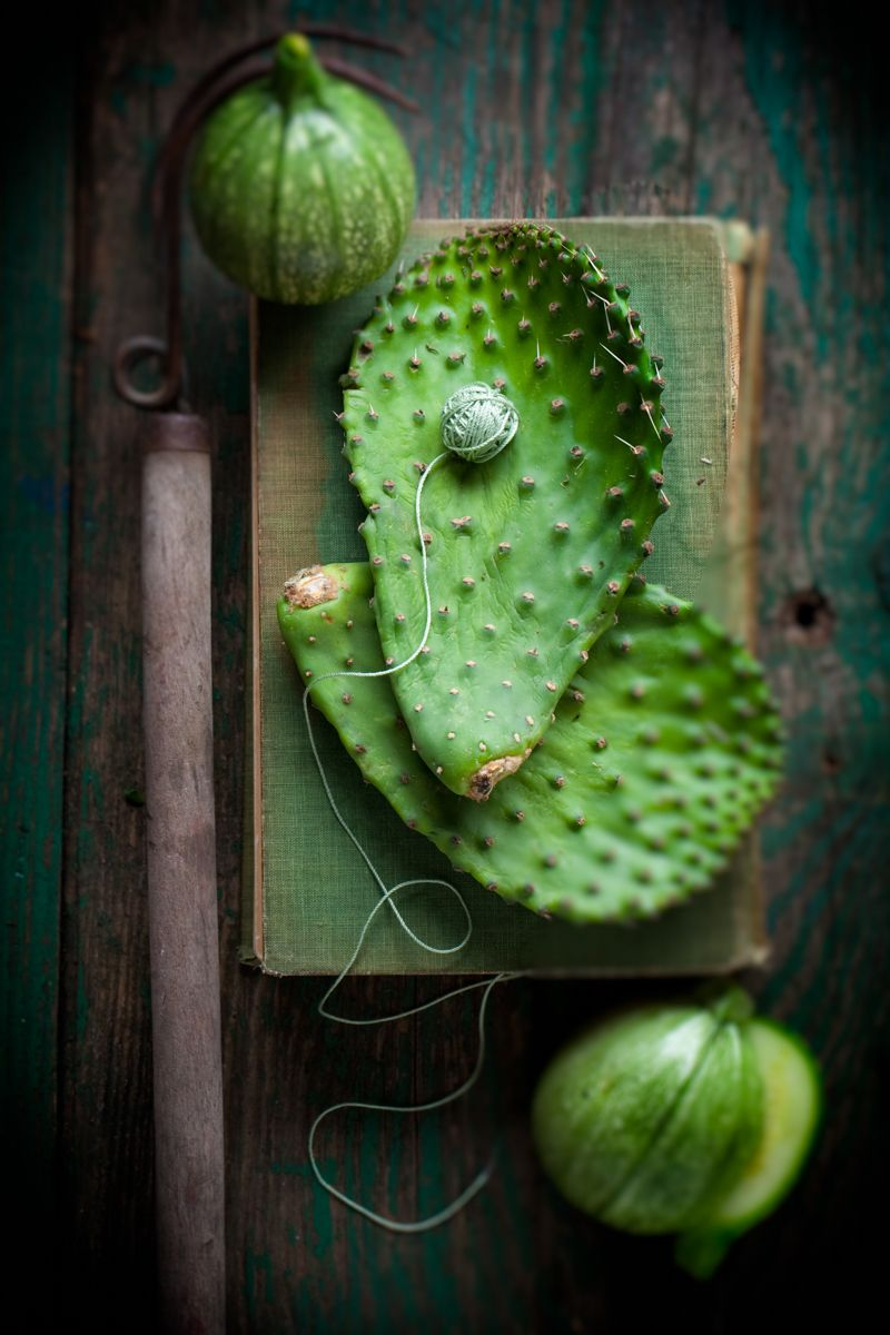 Cactus leaves with round zucchinis on green book with green rustic wooden surface www.rkjacobs.comTop Food Photographer New York Seattle PortlandRobert Jacobs Photography ©2013
