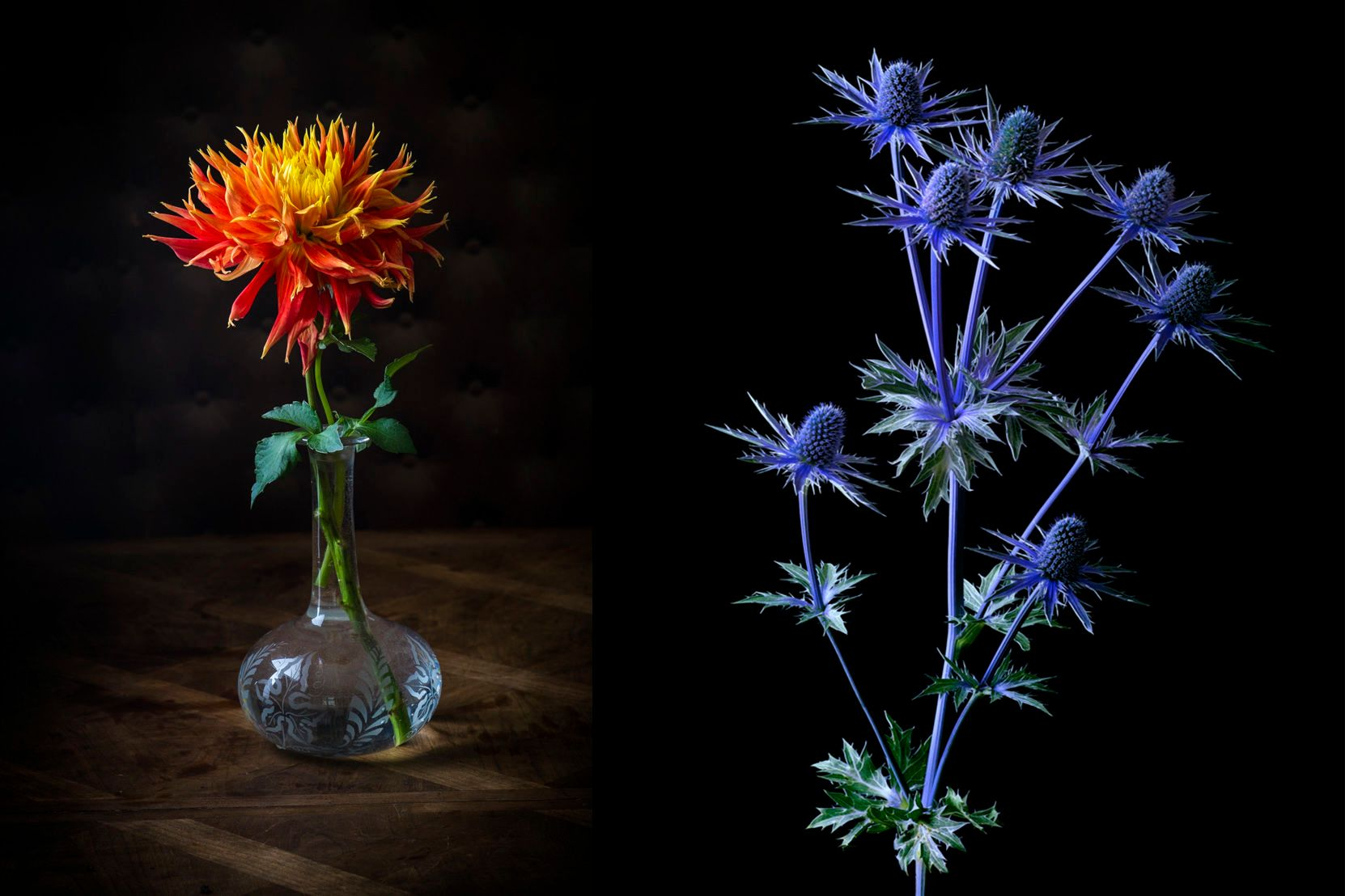 Blue Thistle and Orange Thistle, glass vase