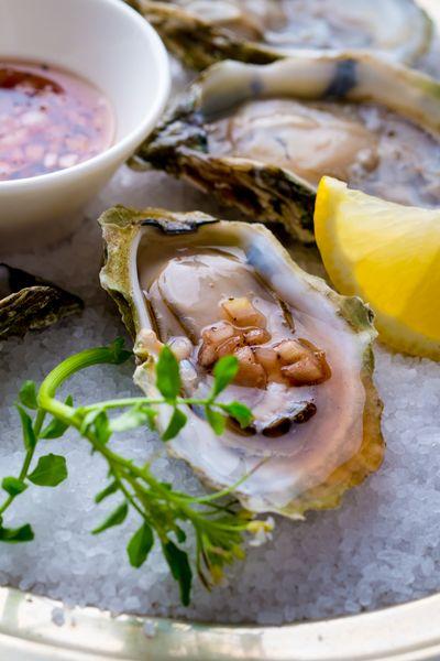 1_0_1734_1www_rkjacobs_com__fujifilm__raw_oysters__lemons__vinegar__salt__0321.jpg