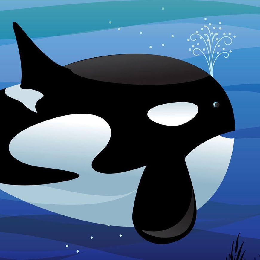 Whale Tale sm.jpg