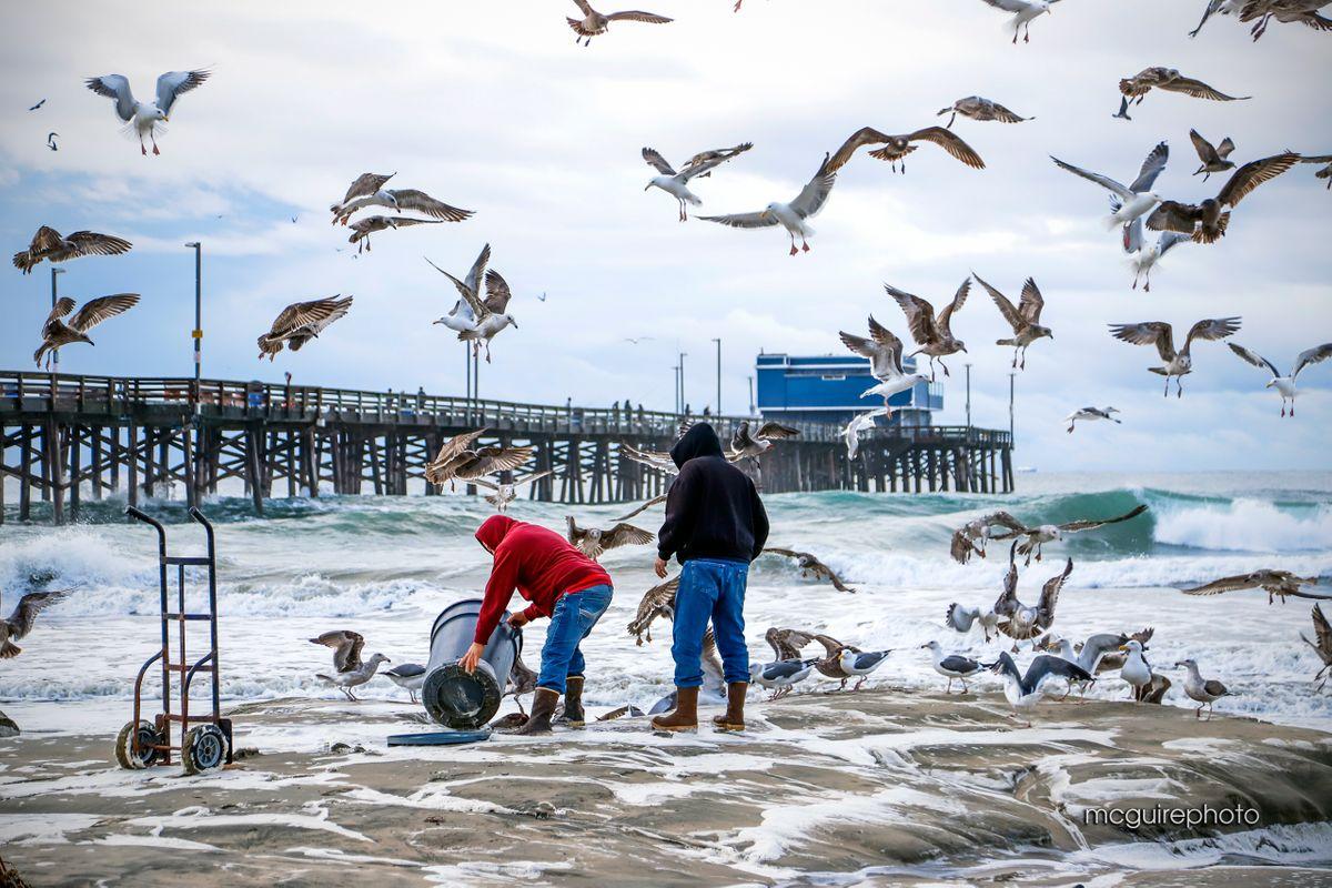 Newport Beach 12-2019 Web06.jpg