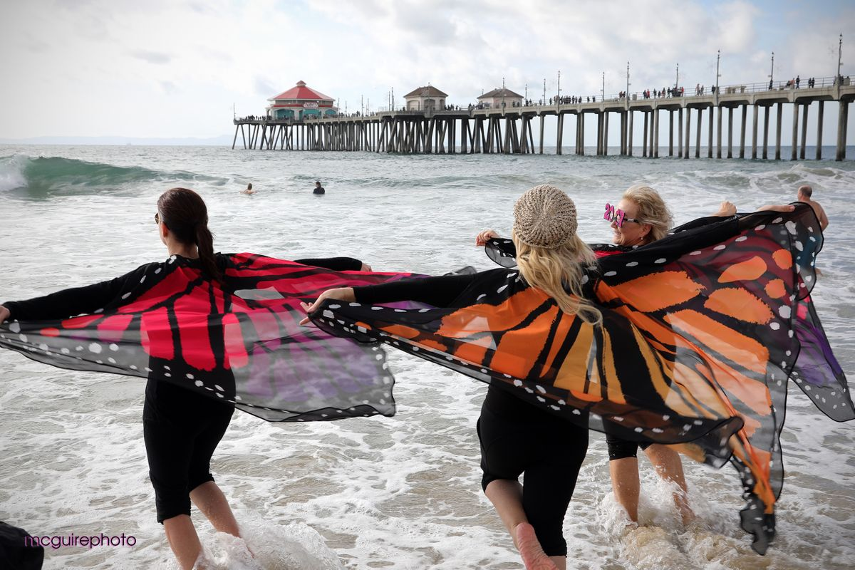 Surf City Splash Web WT07.jpg