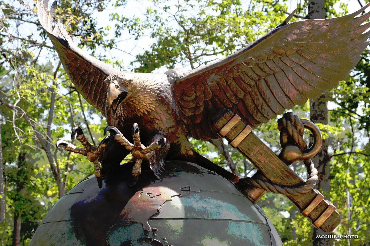 Veterans Day Eagle WEB1.jpg