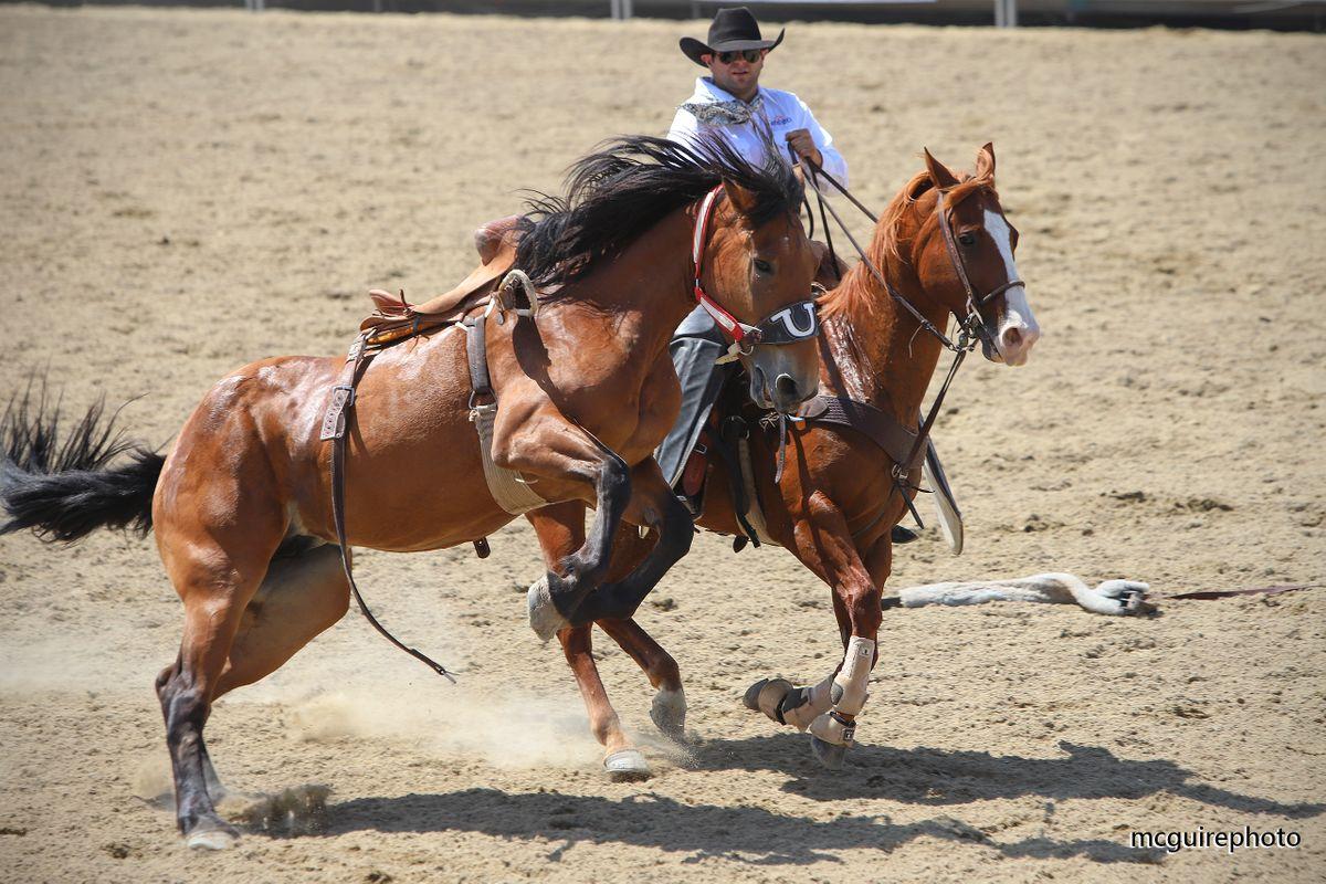 RMV Rodeo WEB086.jpg