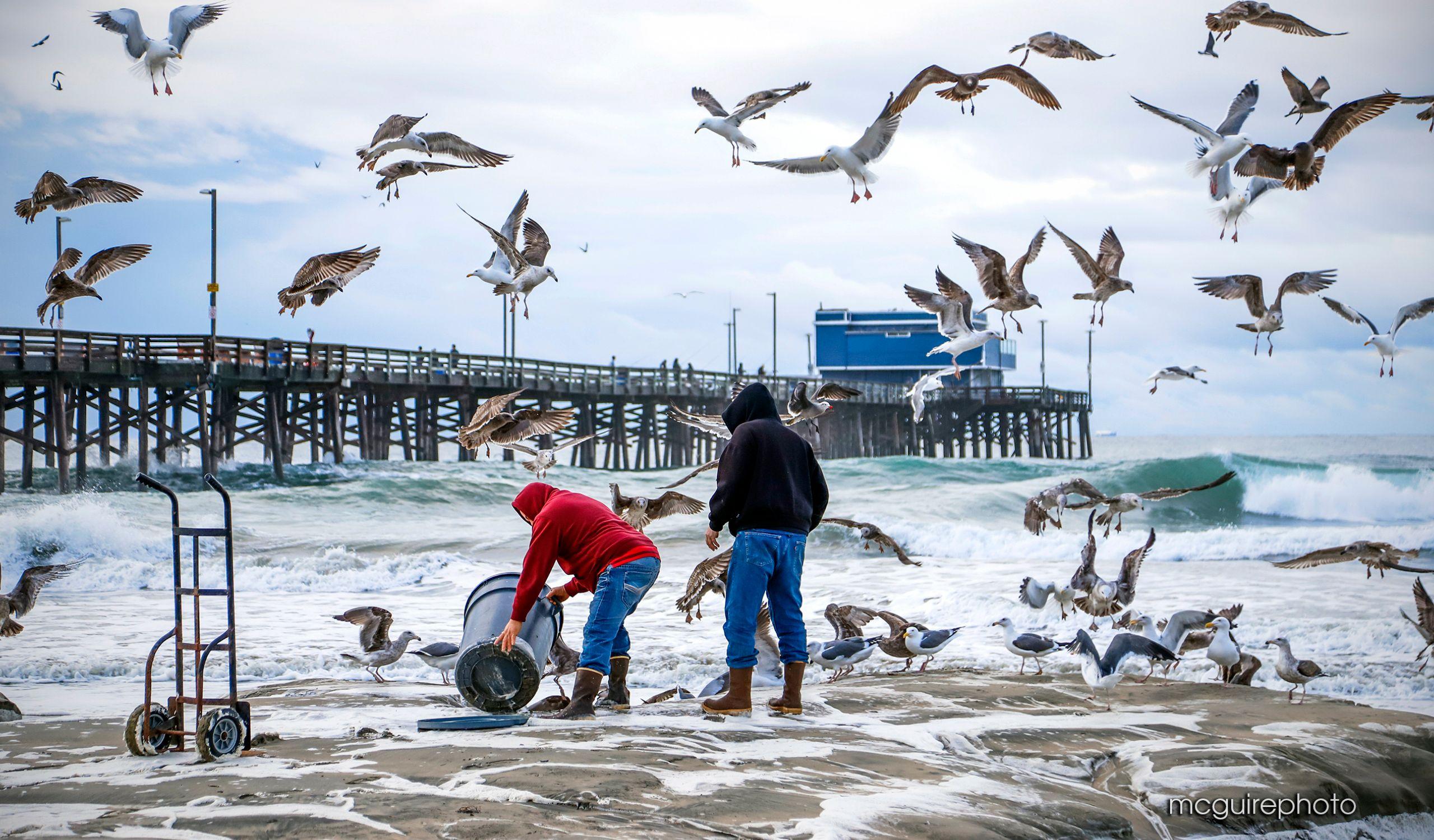 Newport Beach 12-2019 HomeWeb06.jpg
