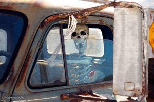 Website Skeleton Driver 395 Web1.jpg