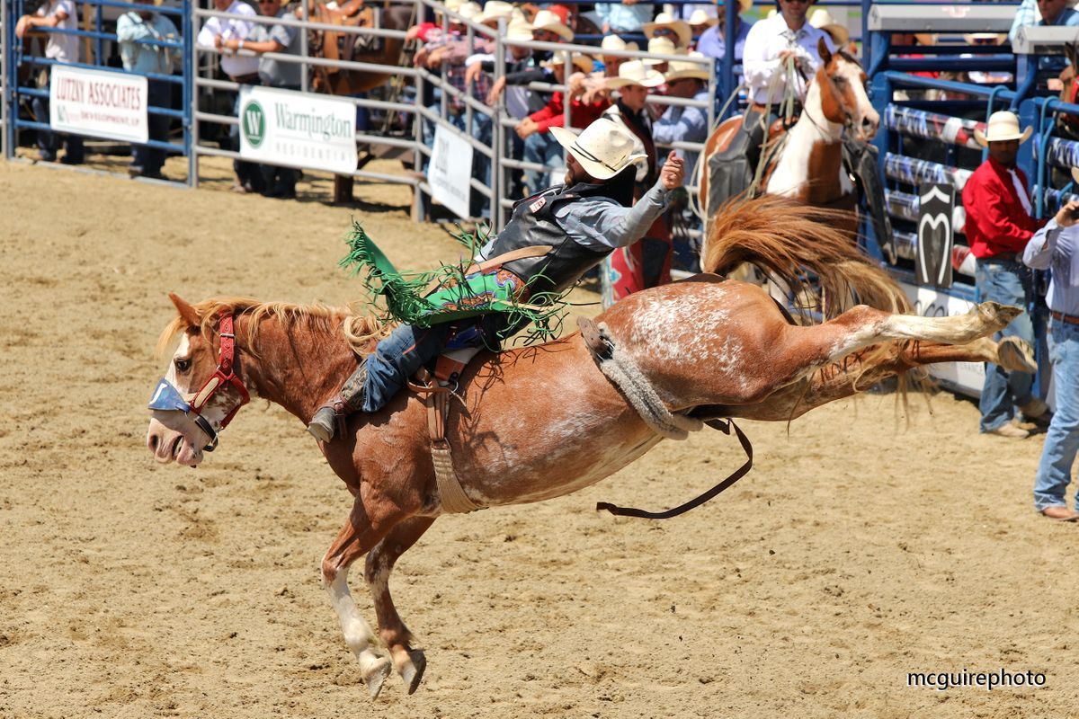 RMV Rodeo WEB012.jpg