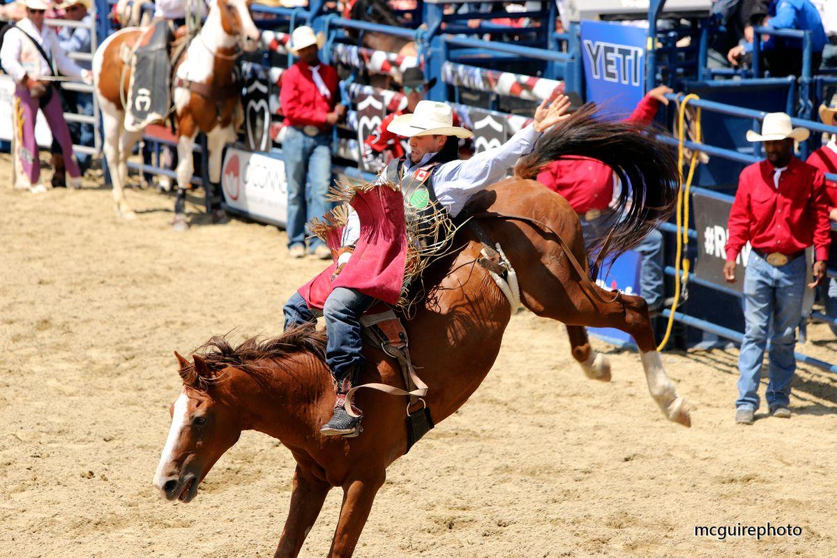 RMV Rodeo WEB006.jpg