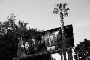 Billboard Cult Sunset.jpg