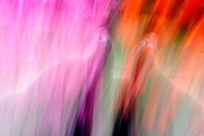 Keukenhof.blur-86.jpg